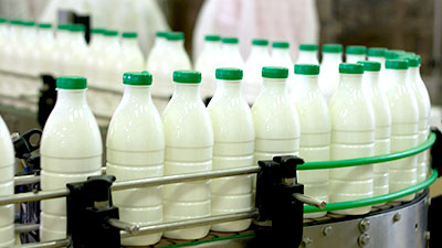 Ngành sữa